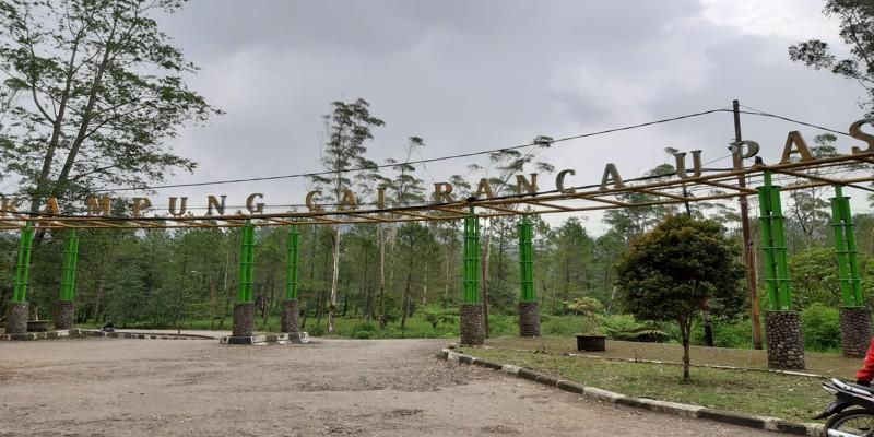 Gerbang Masuk Kampung Cai Ranca Upas Ciwidey Bandung