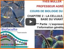 Biologie moléculaire cours