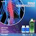 Solusi Osteoporosis yaitu dengan Joint Formula, Kolostrum dan Klorofil