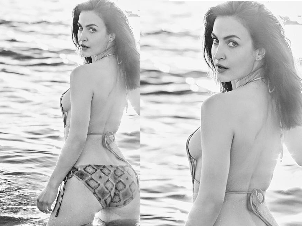Elli Avram - Hot Sexy Bikini Photos | Elli Avram Wallpapers