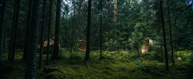 自然の音を強調する森の中のメガホン?【a】