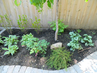 Toronto Cabbagetown garden makeover after Paul Jung Gardening Services
