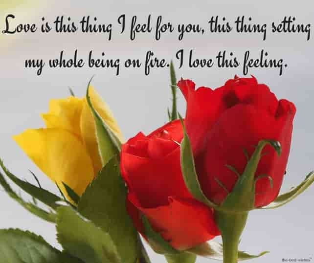 text message for her with roses images