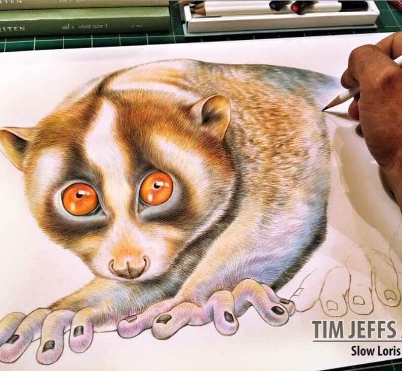 03-Loris-Tim-Jeffs-www-designstack-co