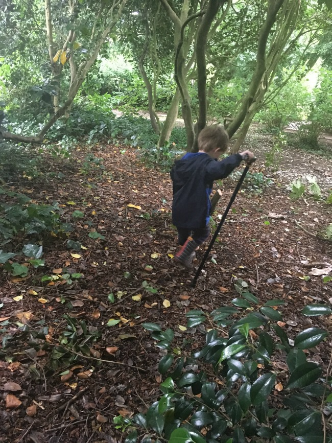 toddler-with-walking-stick-in-woods