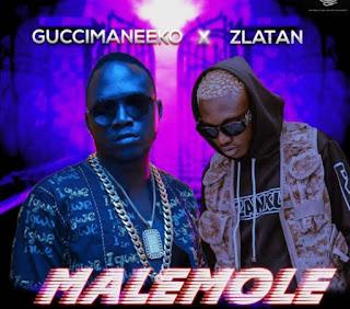 [Music] Guccimaneeko ft Zlatan Ibile - Malemole