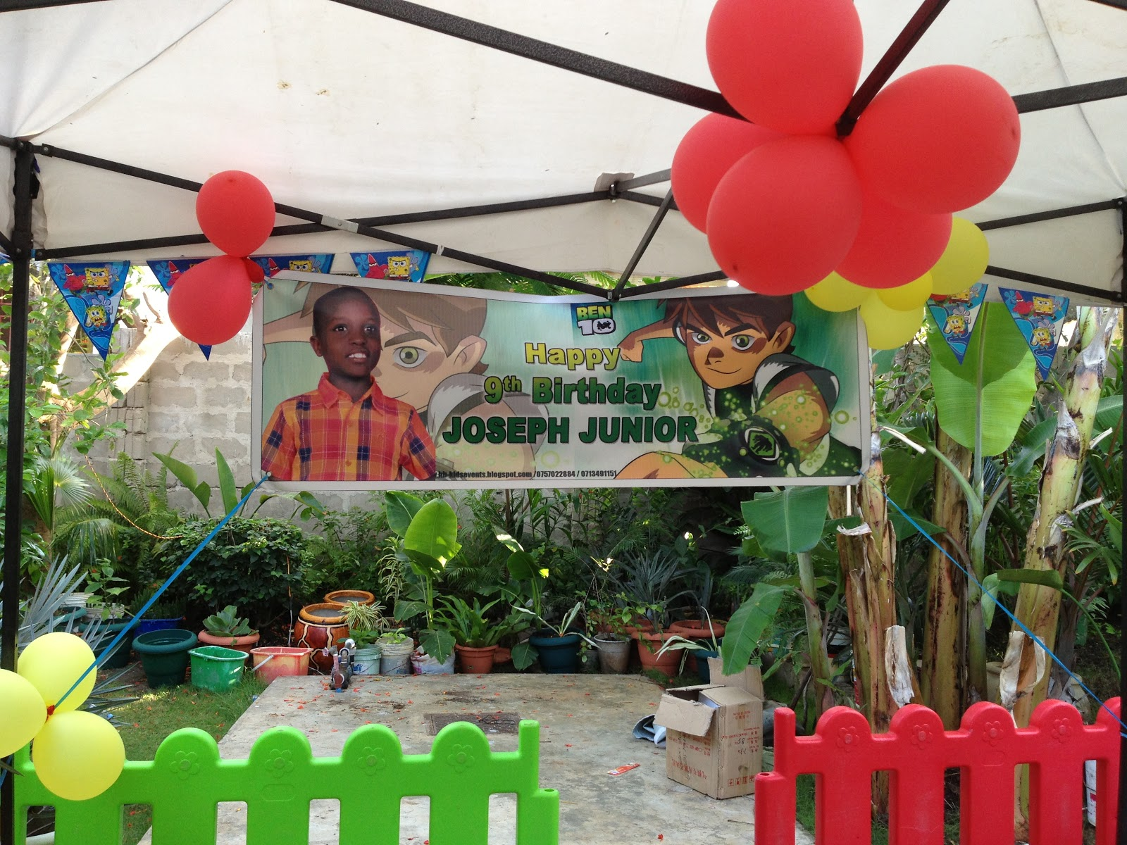 BEN 10 BIRTHDAY PARTY FOR A 9 YEARS OLD