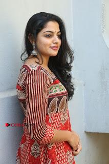 Telugu Actress Nikhila Vimal Latest Stills in Anarkali Dress  0119.JPG