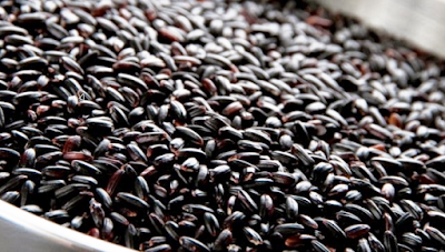 Tag: beras hitam untuk diet