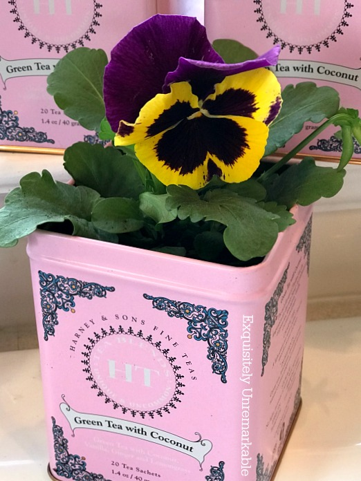 Recycled Tin Flower Pots With Pansy Flowers