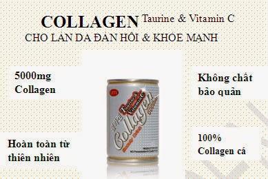 Collagen không chất bảo quản
