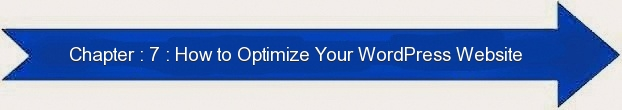 Next: How to Optimize Your WordPress Site