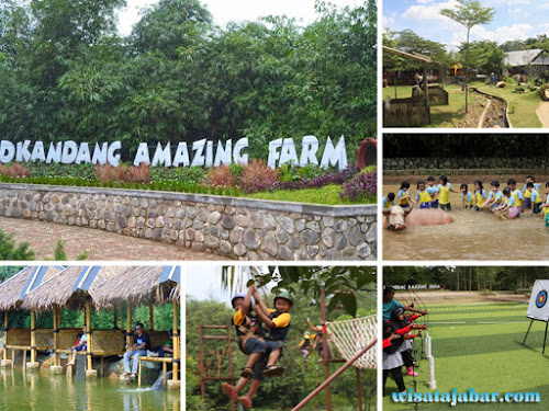 Dkandang Amazing Farm Depok