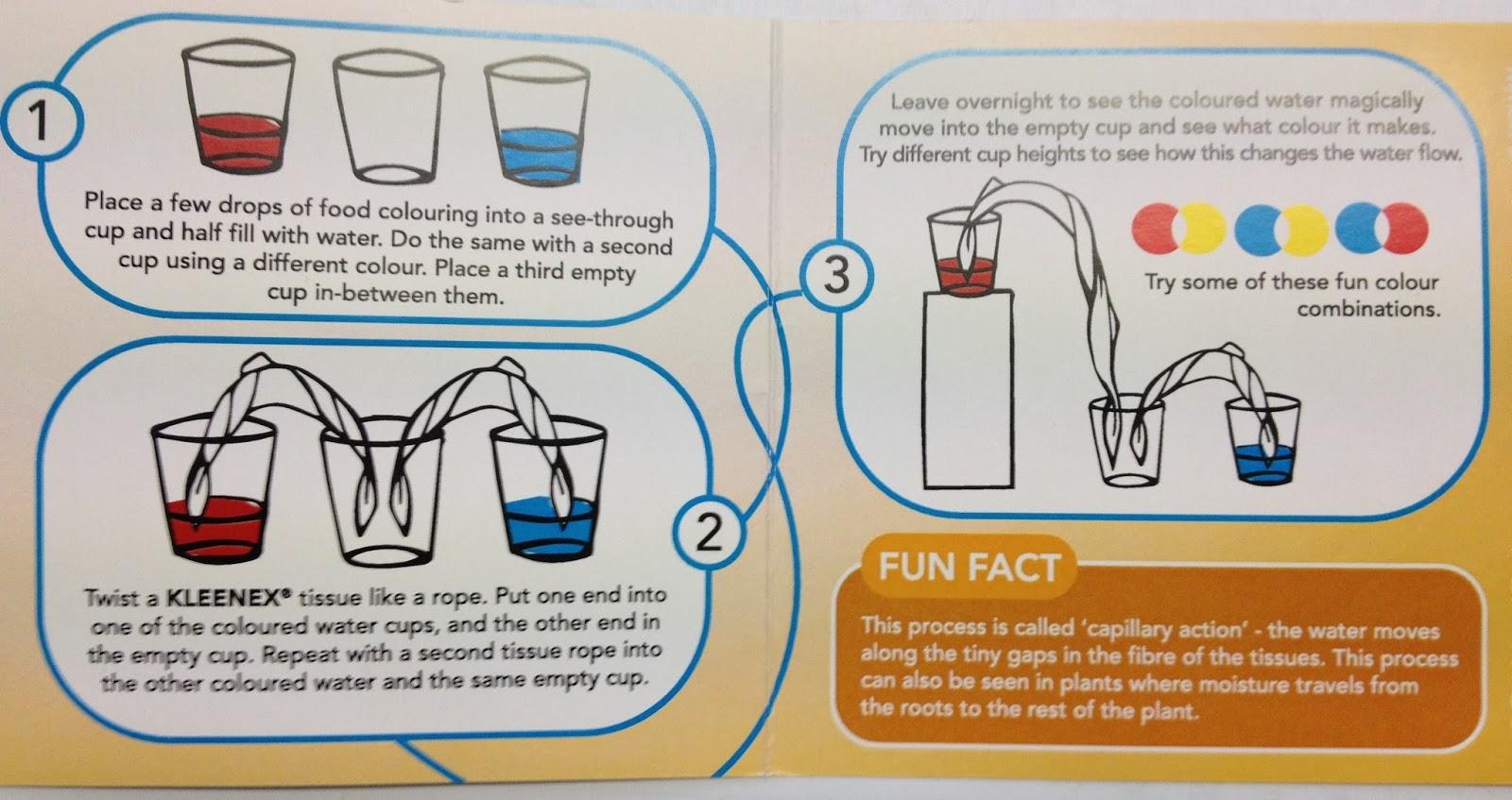 Rata S Blog Walking Water