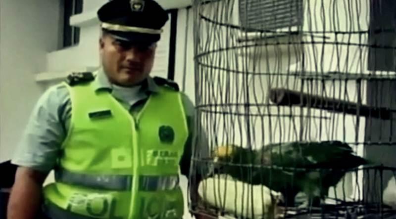 https://www.listeblogu.com/2019/02/insan-muamelesi-yaplarak-tutuklanan-10.html