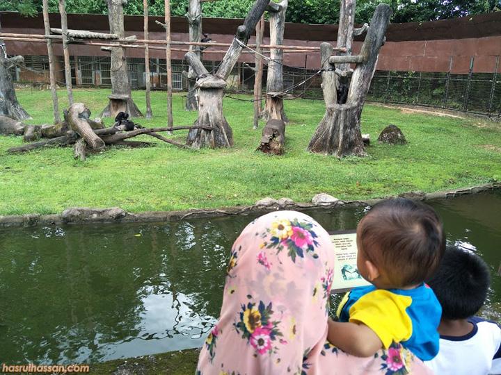 Lawat Zoo Taiping Harga Tiket Terkini