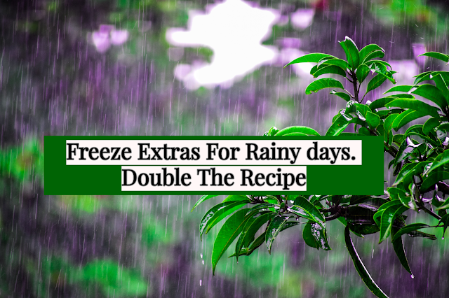 Double the recipe and freeze the extra for those days when nobody can or wants to cook. However, remember not all things freeze well. I have included freezing directions wherever possible