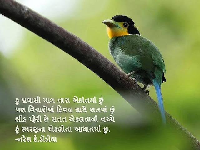 Hu Pravshi Tara Ekant Ma chu Sher By Naresh K. Dodia
