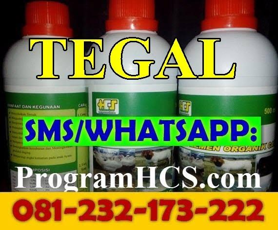 Jual SOC HCS Tegal
