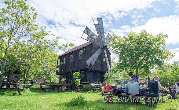 Polonezköy'de mangal yapıp geniş bahçesinde keyifli vakit geçirilecek Stella'nın ortamı
