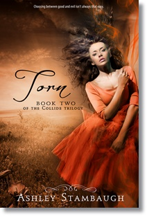 Torn (Ashley Stambaugh)