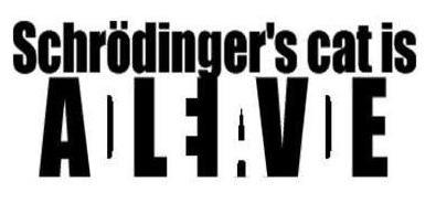 Il paradosso del gatto di Schrödinger