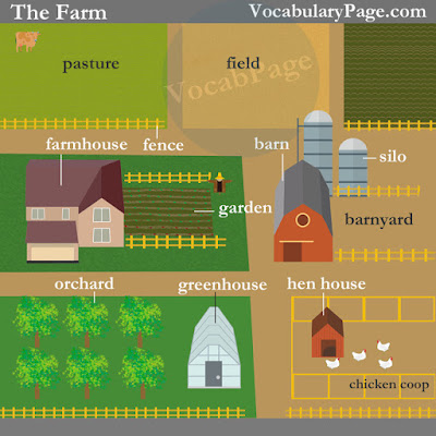 Farming vocabulary