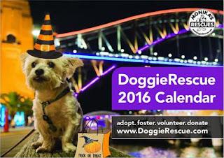 Doggie-Rescue-2016-Calendar