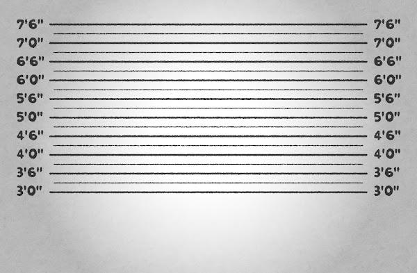 マグショットの背景素材(インチ)