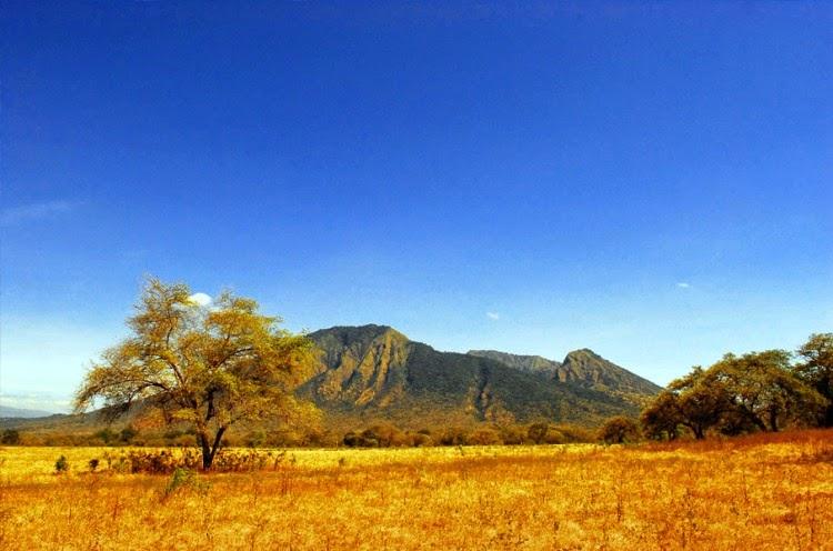 Foto Taman Nasional Baluran