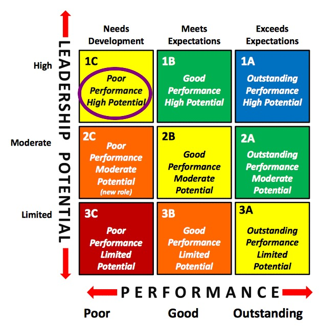 Talent Management 9 Box Grid Poor Performance High Potential