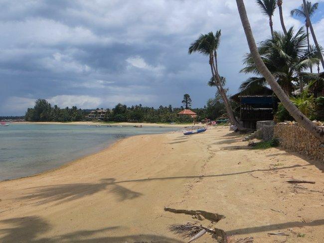 Пляж с пальмами и прозрачной водой моря