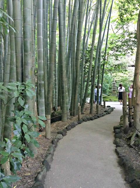 Templo de Bambú Kamakura