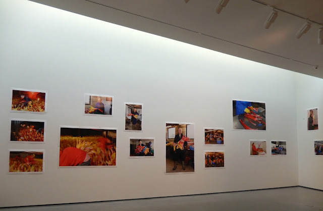 The-Rhubarb-Triangle-Martin-Parr-exhibition-The-Hepworth-Wakefield