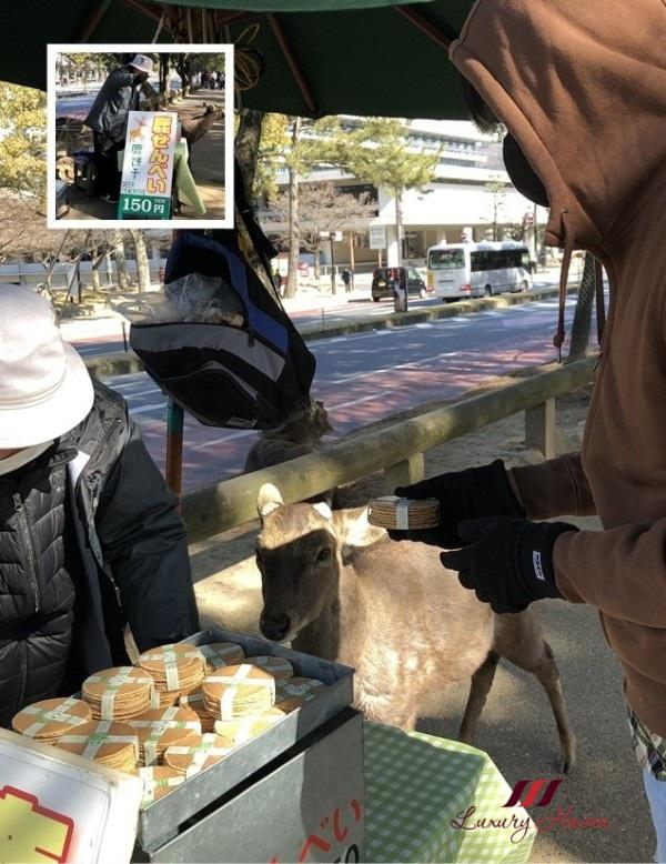 osaka nara park shika senbei deer crackers