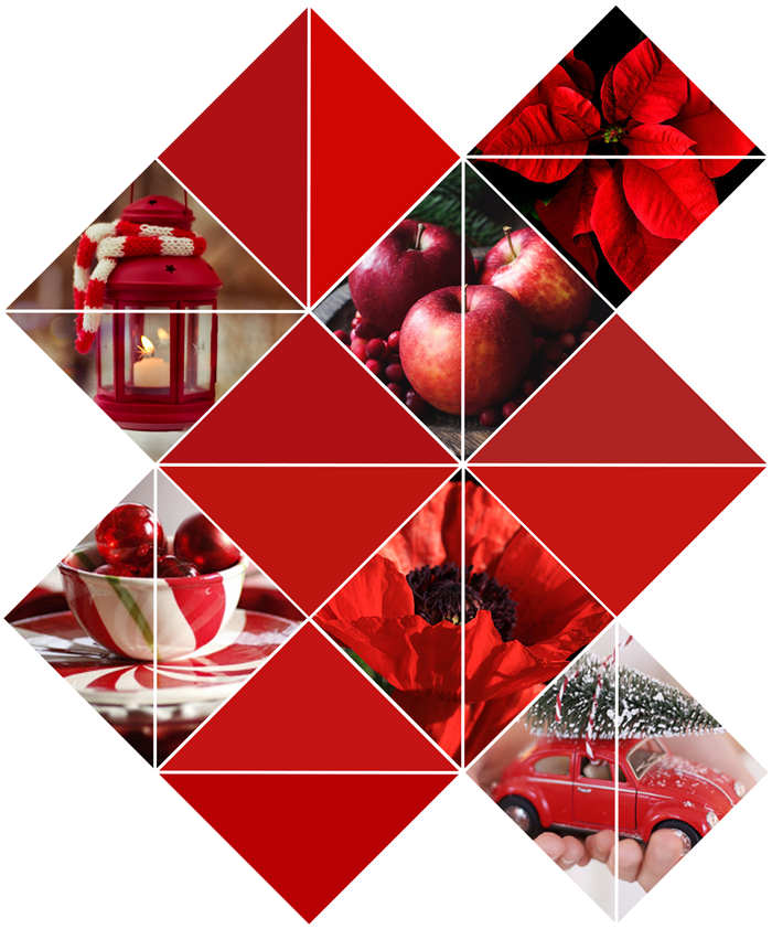 Photography, color, story, collage, moodboard, mood board, flowers, nature, christmas, red, valiant poppy, pantone fall winter color trend