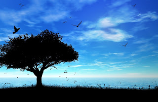 Gambar burung-burung dan pohon
