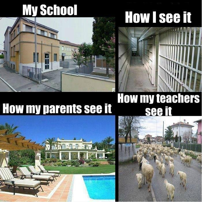 Funny Quotes About School Life: Funny School Quotes About Life. QuotesGram