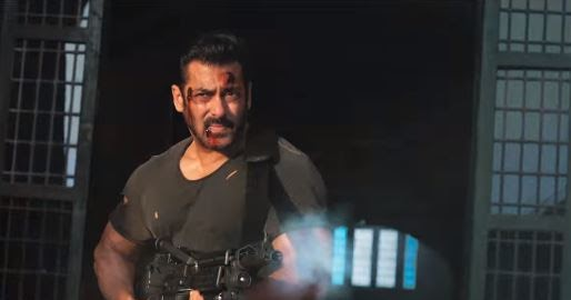 Tiger Zinda Hai Movie Dialogues  Salman Khan  Katrina Kaif-5352