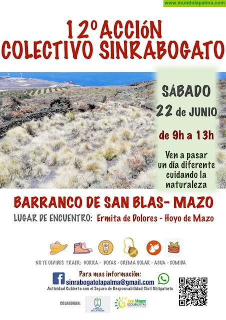 12º Acción Colectivo Sinrabodegato Barraco de San Blas Villa de Mazo