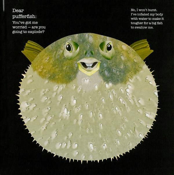 pufferfish illustration Steve Jenkins