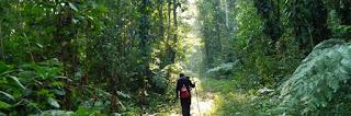 5 Fakta Mengenai Bumi Yang Harus Anda Ketahui