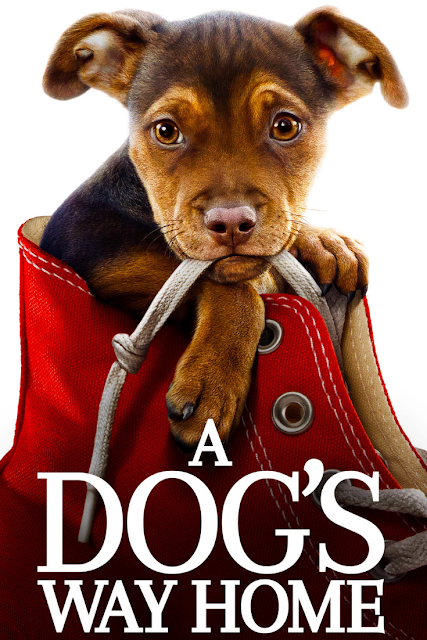 A Dog's Way Home on DVD Bluray