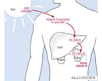 premium beautiful corset mencegah osteoporosis dan patah tulang belakang dan pinggul dengan cahaya FIR dan membantu badan membina vitamin D3 dengan adanya cahaya matahari UVB