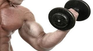 latihan untuk membentuk otot lengan,membentuk otot lengan di rumah,kekuatan otot lengan,memperbesar otot lengan,cara melatih otot lengan,latihan otot tangan,