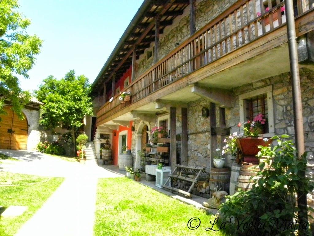 Azienda Beniamino Zidarich a Prepotto Trieste