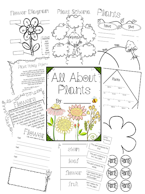 https://www.teacherspayteachers.com/Product/All-About-Plants-Unit-612820