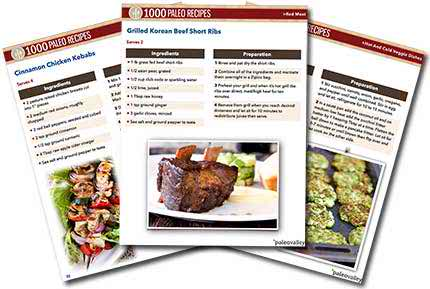 Best 1000 Paleo Recipes : Review