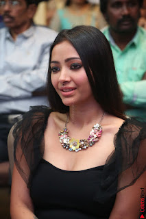 Swetha Basu in a Black Sleeveless Top Long Skirt at Mixture Potlam Movie Audio Launch 031.JPG