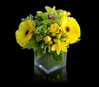 Sunny Delight Custom Floral Design Boston